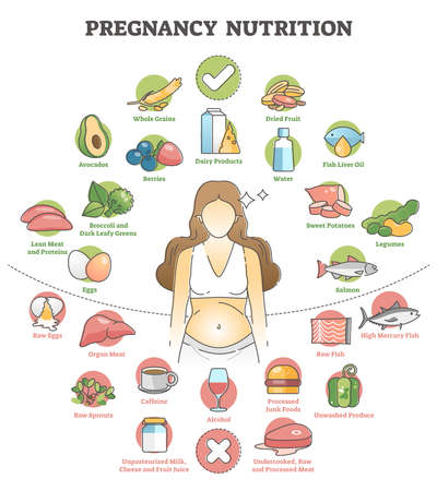 Pregnancy nutrition with recommendation female food products outline concept