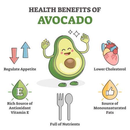 Health benefits of avocado eating as nutrient value scheme outline concept