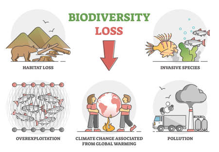 Biodiversity loss issues and causes as climate ecosystem problem outline set Vettoriali