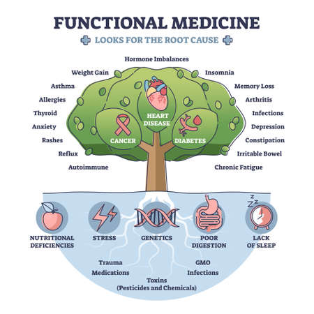 Functional medicine as treatment with looks for root cause outline diagram