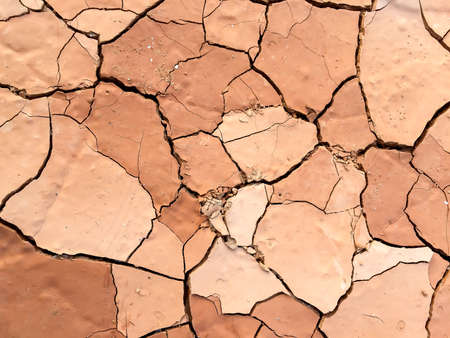 hot temperature: Dry cracked mud in a hot temperature day