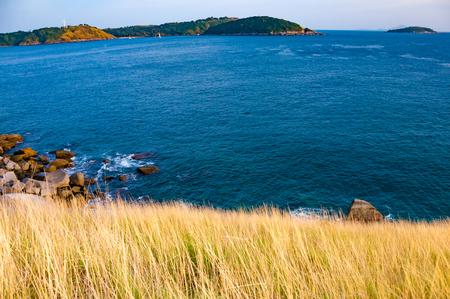 ナイ ハーン ビーチ、プロンテップ岬、プーケット タイ近隣、フォア グラウンドで黄色の草と湾の広角