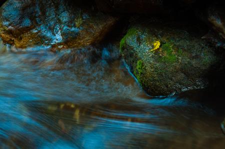滝と暗い低キーのリーフとロックとコピー領域と長時間露光