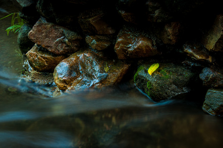 Yellow leaf on the rock with waterfall  in dark low key and long exposure with copy space Zdjęcie Seryjne - 78226222