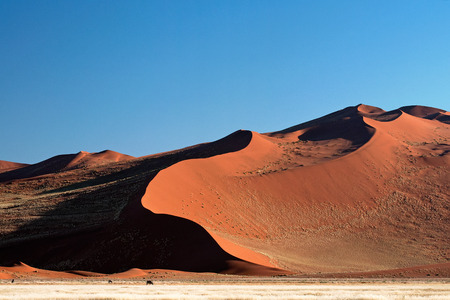 namib: Namib desert, Namibia Stock Photo