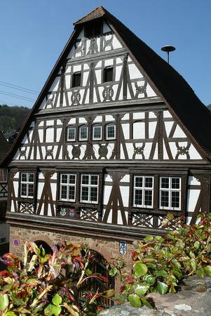 renaissance: Renaissance townhall Drrenbach