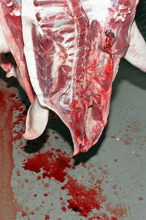 butcher s shop: Slaughterhouse