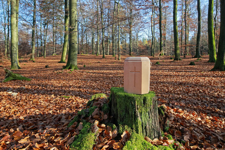 Waldfriedhof Standard-Bild