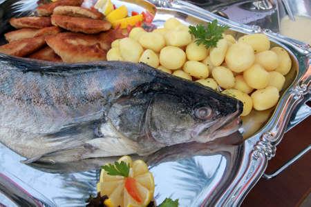 pikeperch: Pike-perch