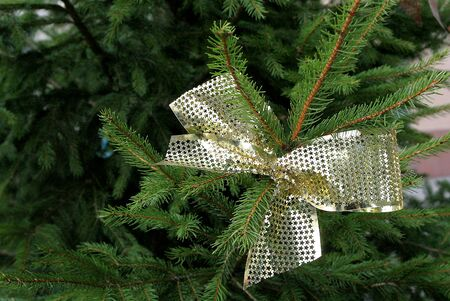 christmas ornamentation: gold bow Stock Photo