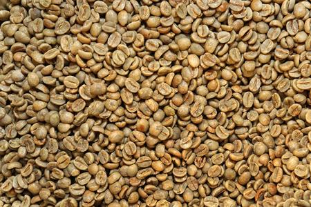 unroasted: Coffee beans unroasted