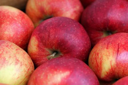 Apple, Jonagored