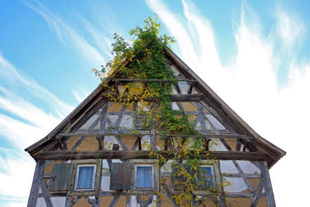 old overgrown half-timbered house