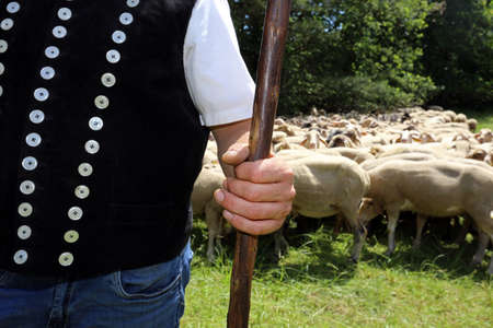 shepherd with shepherd's staff, closeup Standard-Bild