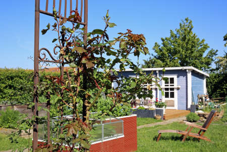 garden shed in the allotment garden
