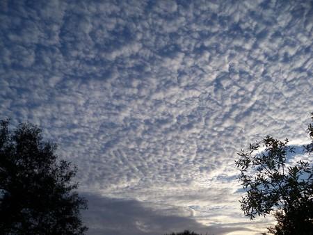 Mackerel clouds light up at sunrise Stok Fotoğraf