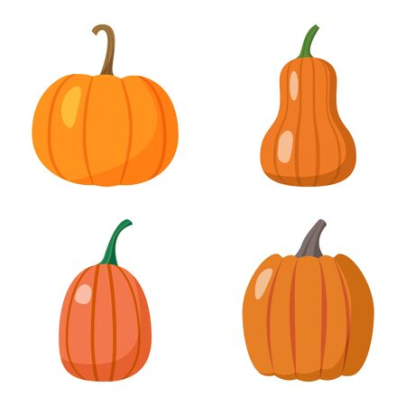 Set of pumpkins isolated on white background. Elements for your design works. Halloween. Thanksgiving Day. Flat style vector illustration.