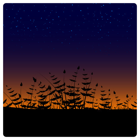 Plant silhouettes Stock Vector - 3496361