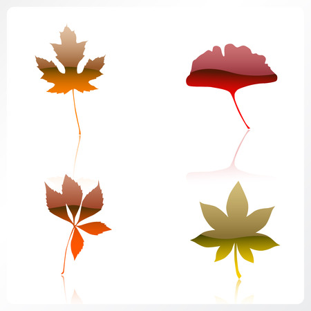 shiny autumn leaves Vector
