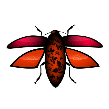 Vector bug illustration Vector