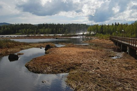 l nutrient: Stream river in the north of Sweden after rain