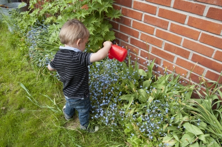 boy watering flowers at summer garden photo