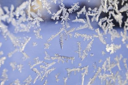 icey: Christmas window
