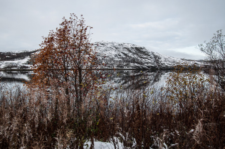 arctic waters: North of Norway