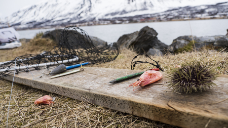 Fishing in the Norway fjord Troms Stock Photo