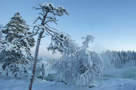 Storforsen waterfall in scandinavia in winter