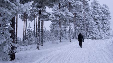 ice motion road in North of Sweden, Zero virus Standard-Bild - 162560508