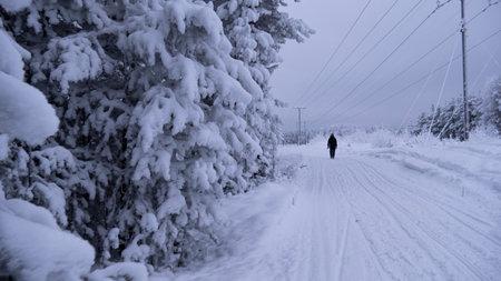 ice motion road in North of Sweden, Zero virus