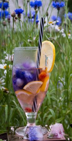 sommar limonade on blue wild meadow cornflowers in the morning
