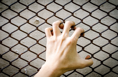 grasping: Hand grasping  at a chain link fence Stock Photo