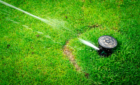 Arroseur d'eau en action arrosant l'herbe Banque d'images