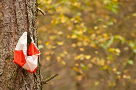 orienteering: An orange and white route marker for Orienteering or Cross Country. Stock Photo