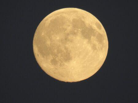 warmth: Moon Warmth
