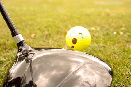 Golfing Horrors Stock Photo