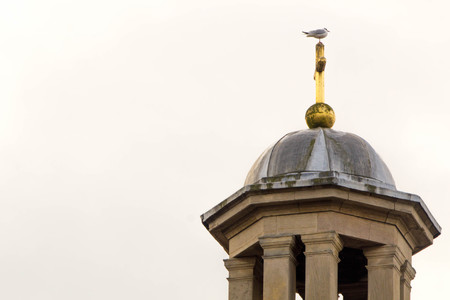 A seagull sits on the spire of a dome rooftop structure.