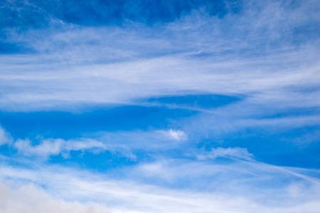 A fresh sunny sky. 版權商用圖片