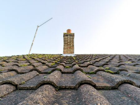 A typical household rooftop which is sloped and covered with balls of moss.