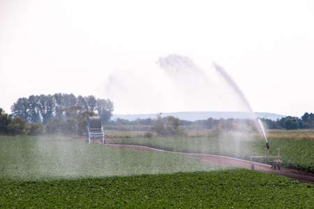 A powerful water jet sprays onto farmland in thel countryside of Lincolnshire, United Kingdom to water the crops and help them grow during the summer heat. Banco de Imagens
