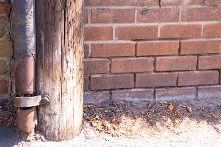 A closeup view at the side of a path through housing with the base of a telegraph pole and old guttering. Behind is the brick wall to a property.