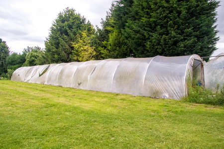 A dome shaped tent for growing fruit and vegetable flowers, protected from the elements.