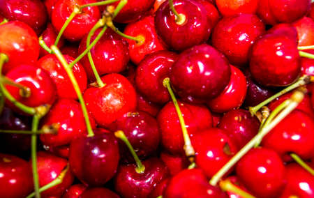 Fresh cherries in a pot that have been picked from a fruit and vegetable picking farm, in England, United Kingdom.