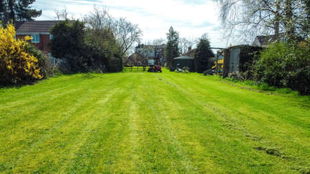 A long garden at the rear of a small property, in England, United Kingdom. Stock Photo