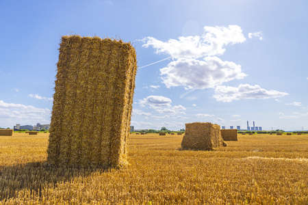 A large hay bail that has been harvested in a farmer's field, in the United Kingdom. The hay used to feed the animals or for food production.