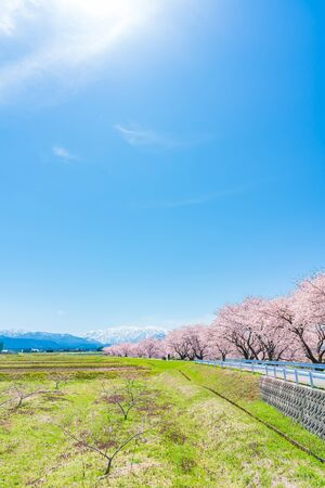 The countryside view from the Funakawa embankment in Toyama Prefecture in spring in Japan