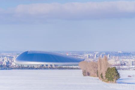 Winter in Hokkaido, Snow view from Sapporo Hitsujigaoka Observatory Editöryel