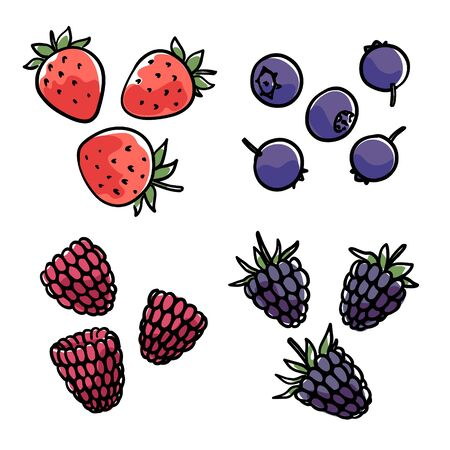 Hand-drawn berries